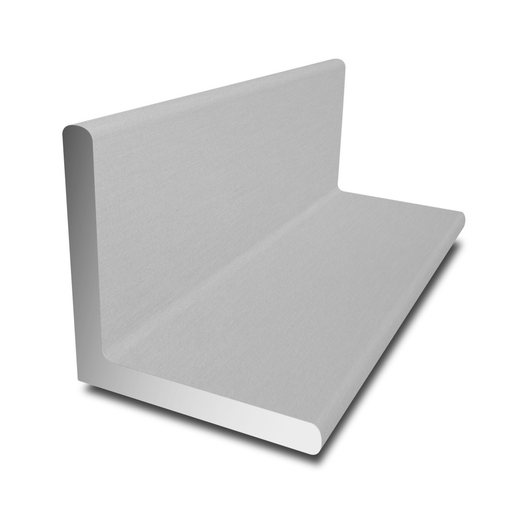 100 mm x 100 mm x 6 mm 316L Stainless Steel Angle